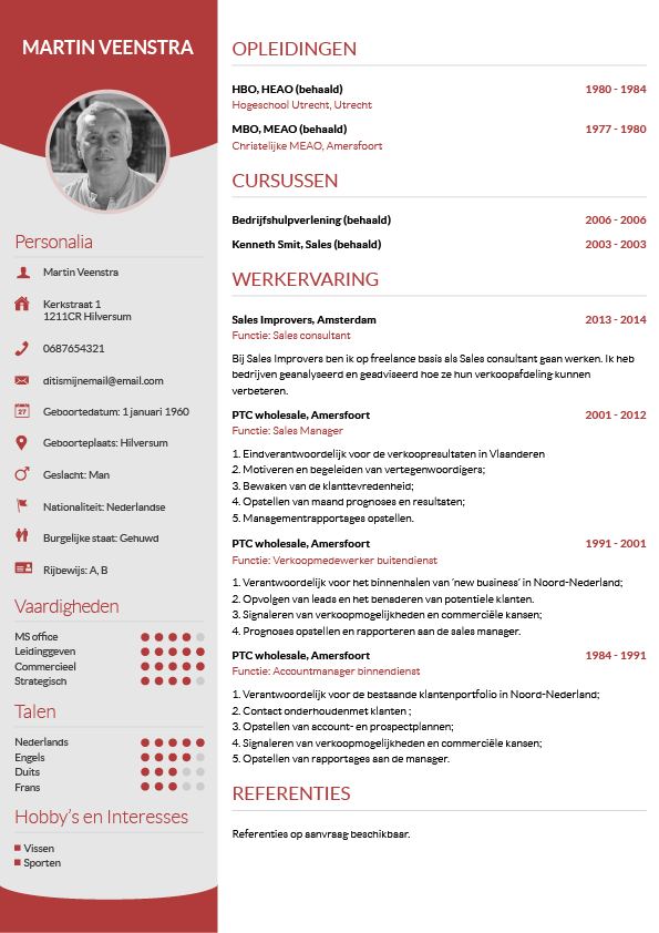 Cv maken in 3 stappen je curriculum vitae downloaden cv wizard voorbeeld cv yelopaper Image collections